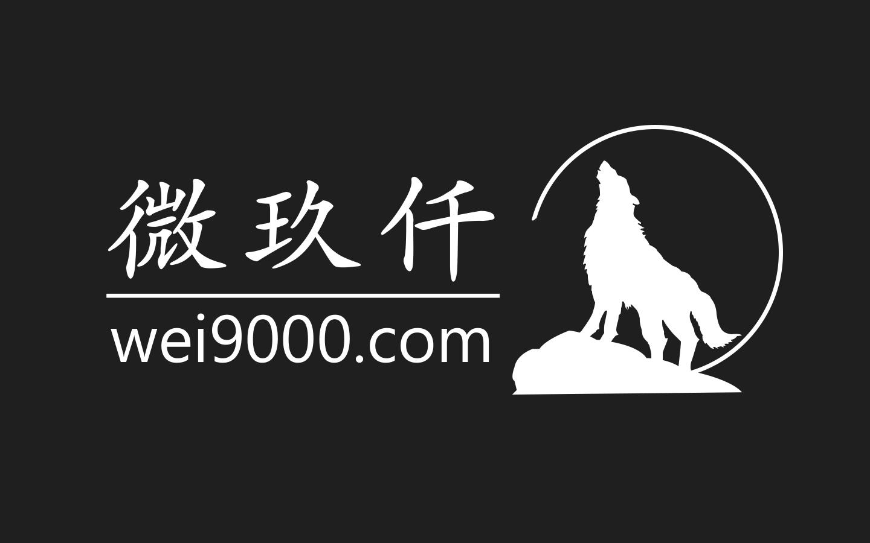 广州微狼信息科技有限公司