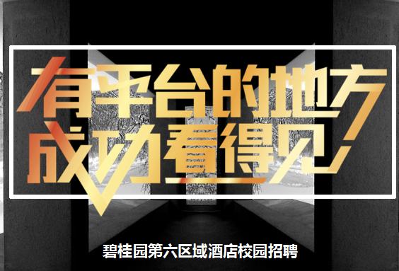 碧桂园凤凰国际酒店管理公司第六区域储干招聘简章