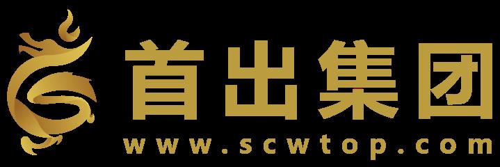 广东首出网络科技有限公司