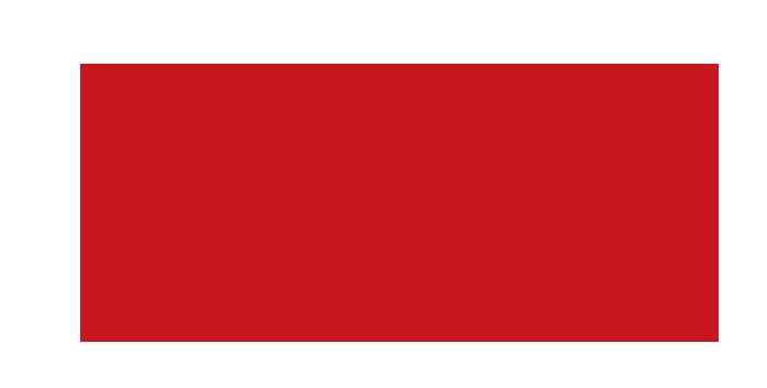 深圳市乐有家控股集团 有限公司